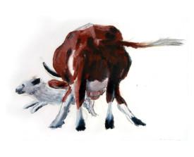Koe met hond, Ardèche . 2003 . 50x65