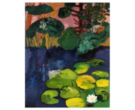 Waterlelies, Overveen . 1993 . olie op linnen . 80x100