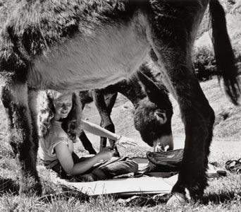 Marianne aan het werk in het landschap
